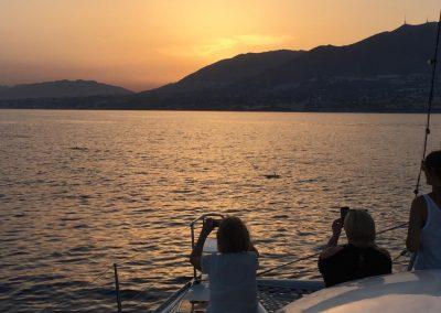 catamaran dragon de oro en el agua